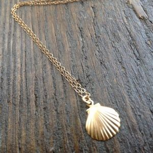 Jewelry - 4 for $25 seashell necklace